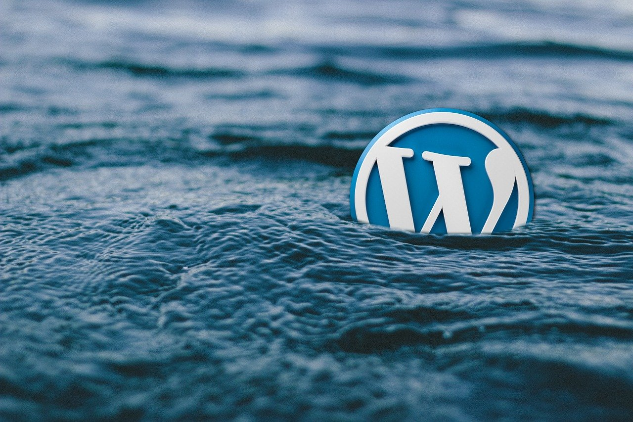What is the difference between WordPress and Website